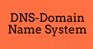 DNS-domain name system