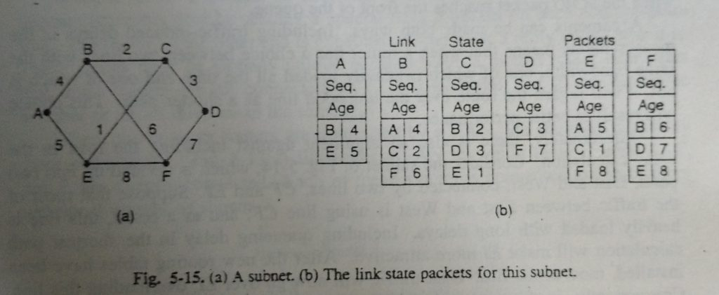 link state packet for this subnet